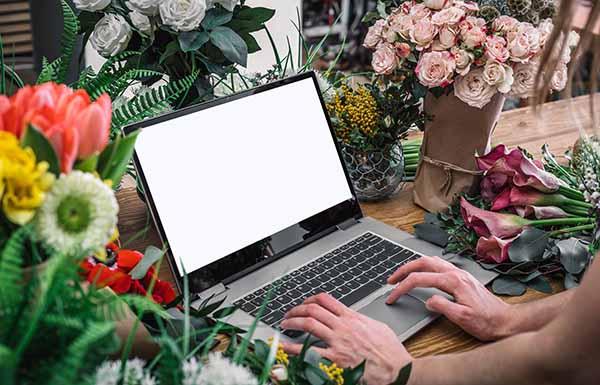 Tư vấn giao hoa