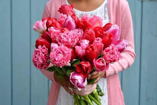 Hoa màu đỏ khai truong