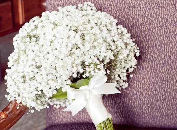 Hoa cưới baby