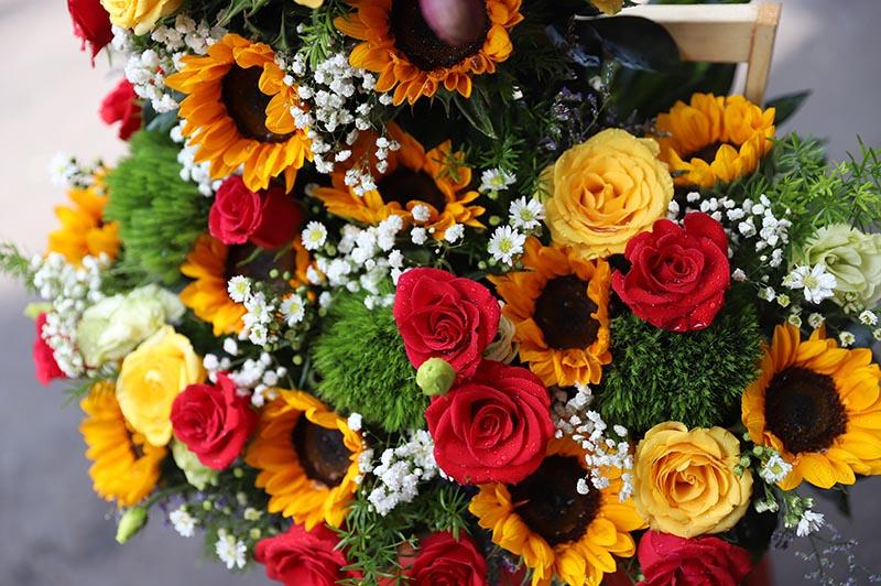 Hoa Valentine 6 - 9