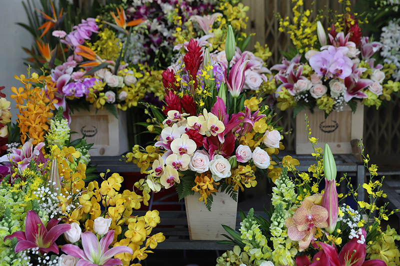 Hoa Valentine 11 1