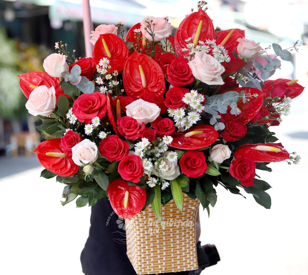 hoa hồng môn sinh nhật