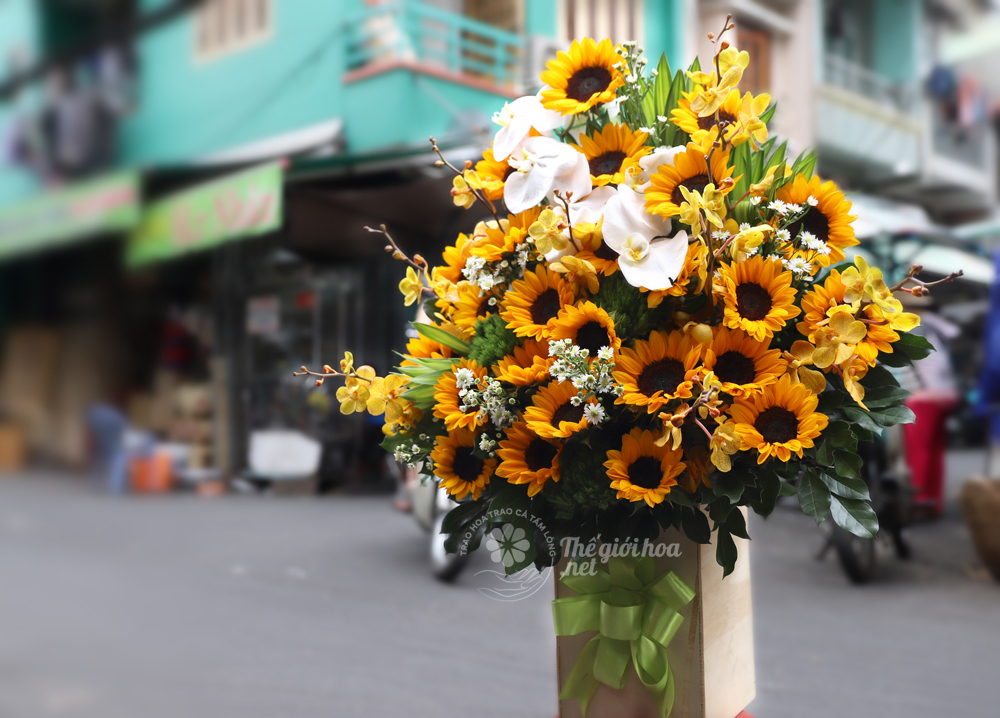 hoa sinh nhật màu nắng 3