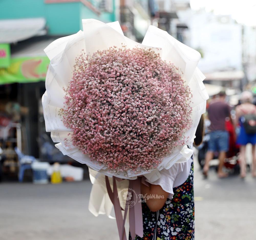 hoa bi