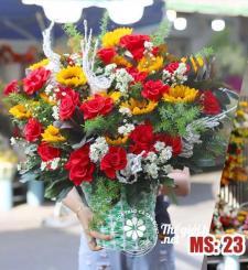 Hoa 20 tháng 10 - Tươi trẻ sức sống MS23