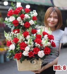 Hoa 20 tháng 10 - Muôn màu cuộc sống MS6