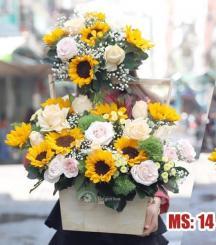 Hoa 20 tháng 10 - Chuyện tình thủy chung MS14