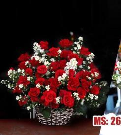 Hoa 20 tháng 10 - Always happy MS26