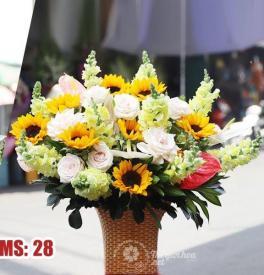 Hoa 20 tháng 10 - Sun smile MS28