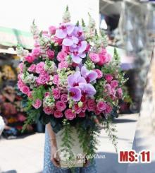 Hoa 8 tháng 3 - Ngày mới tươi đẹp MS11