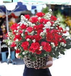 Happy Birthday Flower - Always Happy