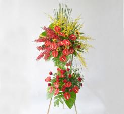 Hoa kha trương may mắn nhân đôi