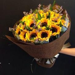 Hoa hướng dương rực rỡ