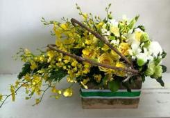 Tình yêu hoa gió