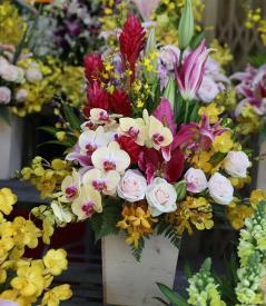 Hoa Valentine 11