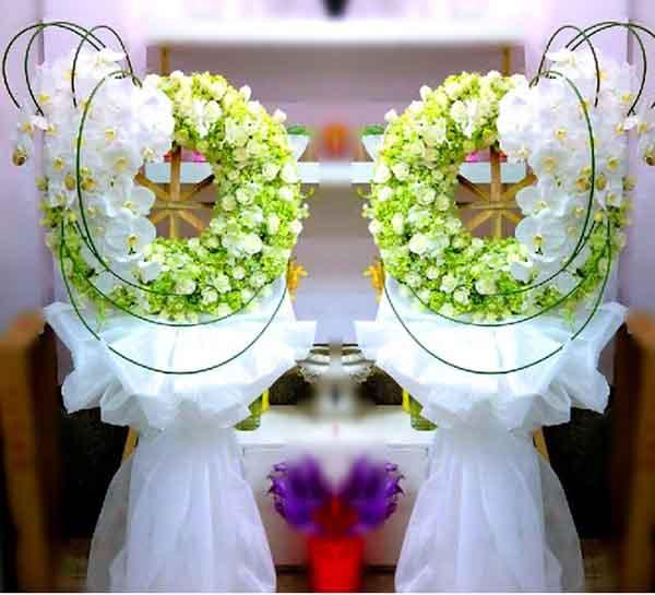 Các loại hoa màu trắng