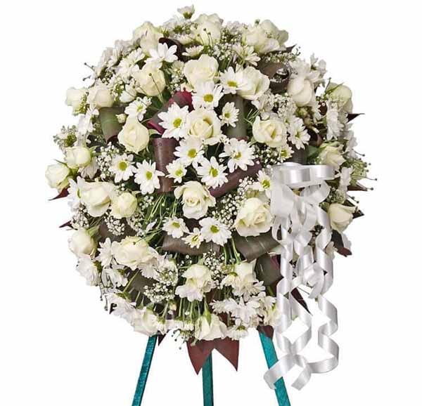 Hoa hồng trắng chia buồn
