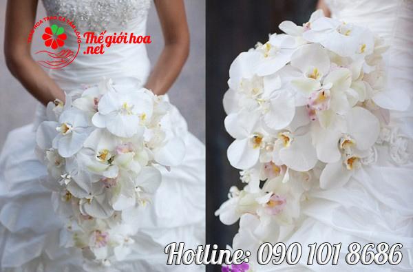 hoa lan cưới