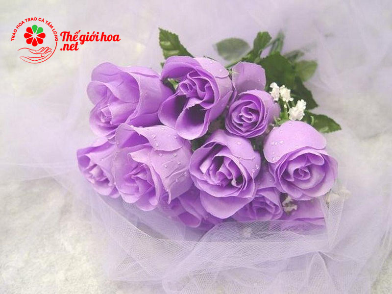 Hoa hồng tím là tình yêu ngọt ngào