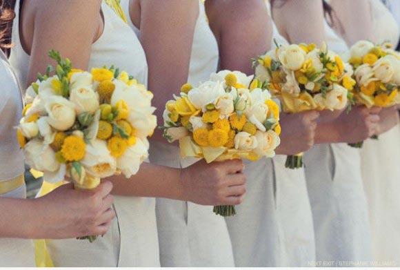 hoa pingpong được dùng làm gì
