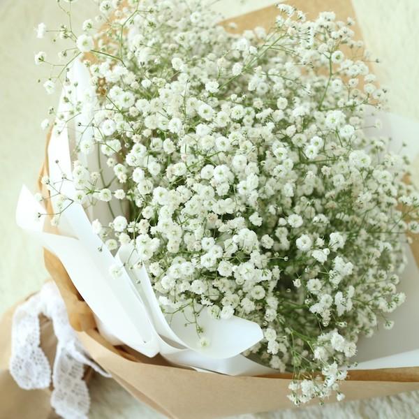 hoa baby hoa bi
